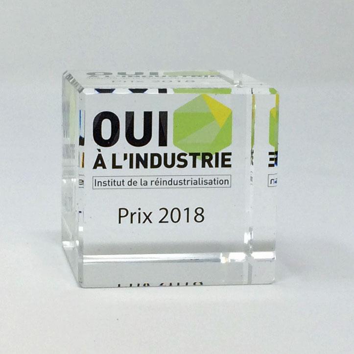 Trophée presse-papier en verre avec impression numérique