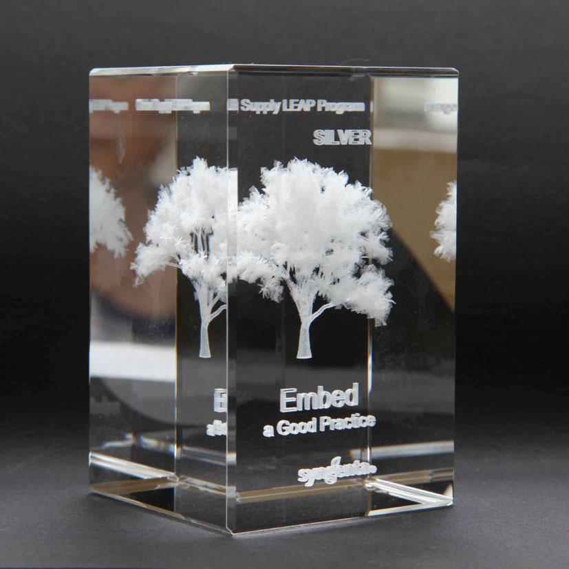 Presse-papier trophée avec gravure et impression couleur possible;